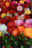 塑料花的明亮和美好的颜色 库存照片