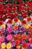 塑料花的明亮和美好的颜色 免版税库存照片