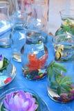 塑料花的明亮和美好的颜色 库存图片
