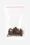塑料透明拉链袋子用在白色隔绝的一点整粒咖啡豆,与红色夹子的真空包装大模型 Conce 图库摄影