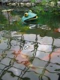 塑料青蛙流行在池塘外面 免版税库存图片
