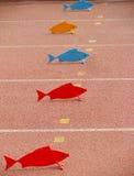 塑料鱼 免版税库存图片