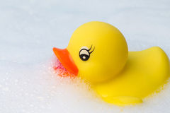 塑料鸭子在泡末浴漂浮 库存图片
