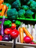 塑料水果和蔬菜有五颜六色 免版税图库摄影