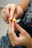塑造微型的方旦糖上升了 库存图片