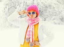 塑造穿一条五颜六色的被编织的帽子围巾的冬天妇女获得在多雪的树的乐趣 免版税库存照片