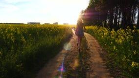 塑造跑沿在日落光,生活方式,幸福的路的愉快的女孩 股票录像