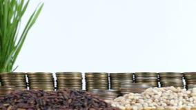 塔吉克斯坦沙文主义情绪与堆金钱硬币和堆麦子 影视素材