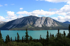 塔吉什湖, Carcross,育空,加拿大 免版税库存图片