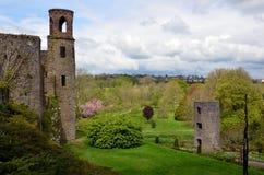 塔和一部分的奉承在爱尔兰防御 免版税库存照片