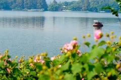 塔和小船在西湖 免版税库存图片