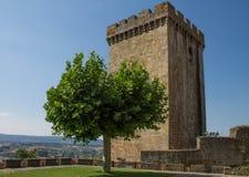 塔和树在城堡蒙福尔特德莱莫斯在加利西亚,西班牙 库存照片