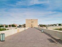 塔和罗马桥梁在科多巴,西班牙 免版税库存图片