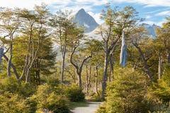 巴塔哥尼亚人的风景乌斯怀亚 免版税图库摄影