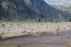 巴塔哥尼亚,智利 库存图片