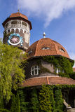 水塔在城市Rauschen 免版税库存图片