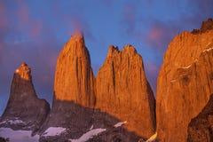 塔在托里斯del潘恩国家公园,智利。 免版税库存照片