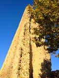 塔在阳光下 库存照片