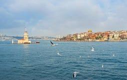 塔在水中 免版税图库摄影