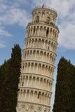 塔在Piza 库存照片