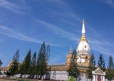 塔在Wat Pha Nam Yoi 库存照片