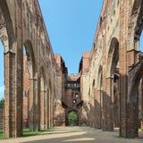 塔尔图大教堂,爱沙尼亚废墟  库存照片