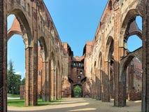 塔尔图大教堂,爱沙尼亚废墟  免版税库存照片