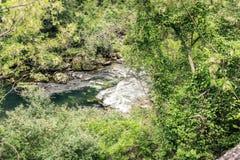 塔恩省河的鲜绿色水 库存照片