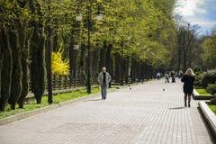 塔拉斯・舍甫琴科公园 市Ivano-Frankivsk,乌克兰 2017年6月10日 库存照片