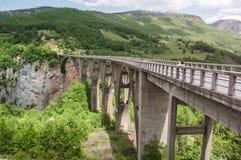 塔拉桥梁是在塔拉河的一座具体曲拱桥梁 库存照片