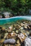 塔拉河峡谷 图库摄影