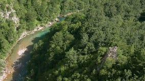 塔拉河黑山峡谷塔拉杜米托尔国家公园地区 倾倒 山河夏日,空中birdseye视图 影视素材