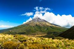 塔拉纳基山峰顶  库存照片