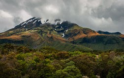 塔拉纳基山,新西兰完善的火山山 库存图片