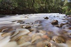 塔斯马尼亚岛富兰克林03河 免版税图库摄影