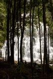 塔斯马尼亚岛瀑布 图库摄影