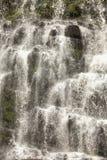 塔斯马尼亚岛瀑布 库存图片