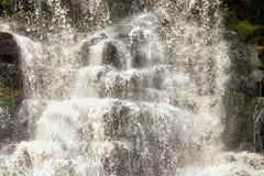 塔斯马尼亚岛瀑布 库存照片