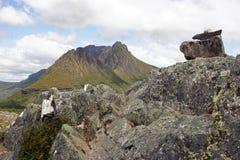 塔斯马尼亚岛,摇篮山NP,澳大利亚 免版税库存照片