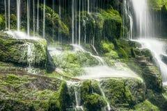塔斯马尼亚的瀑布 库存图片