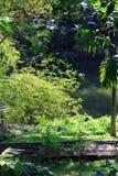 塔曼Ayu寺庙- Mengwi皇家寺庙010 免版税库存照片