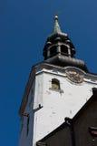 塔林圆顶大教堂这最旧的教会。 免版税图库摄影