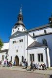 塔林圣玛丽的大教堂  库存照片