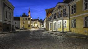 塔林爱沙尼亚,欧洲,城堡正方形 库存图片