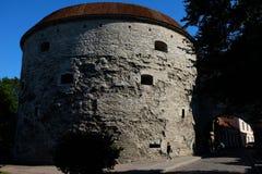 塔林老镇在塔林,爱沙尼亚 免版税库存图片