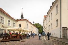 塔林老镇在爱沙尼亚 免版税库存照片