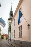 塔林老镇在爱沙尼亚 图库摄影
