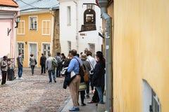 塔林老镇在爱沙尼亚 库存照片