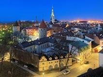 塔林老镇的晚上视图,爱沙尼亚 库存图片