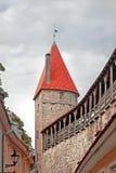 塔林老镇的街道在爱沙尼亚 免版税库存照片
